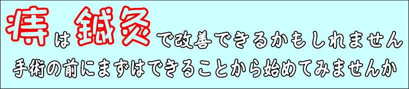 痔の鍼灸治療|せきぐち鍼灸整体院|武蔵小金井