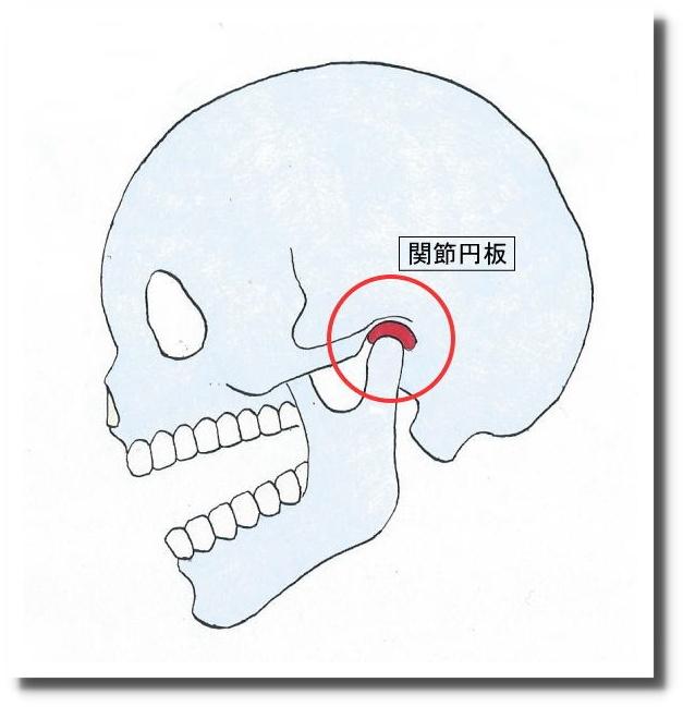 せきぐち鍼灸院 武蔵小金井 顎関節症
